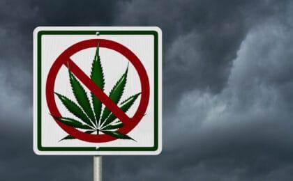 Marijuana DUI Colorado